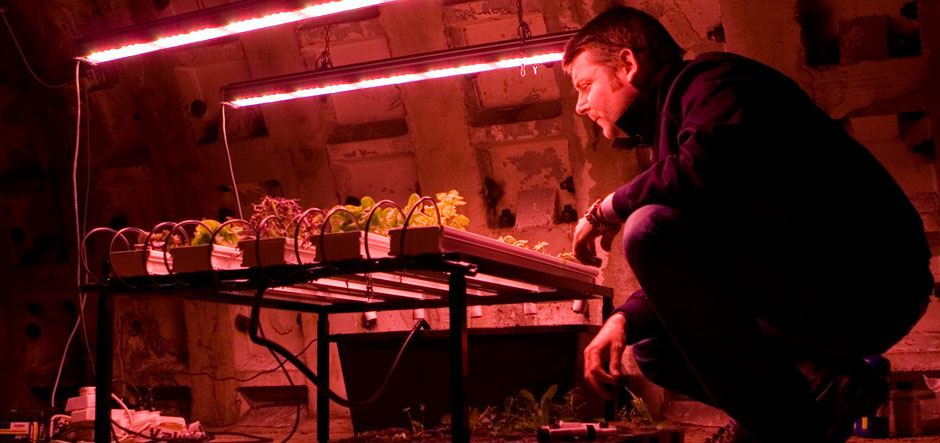 Microsoft productivity technology supports Growing Underground